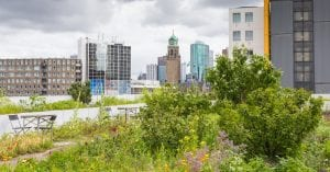 agriculture-urbaine