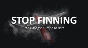 finning-stop