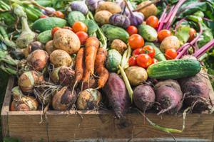 souverainete-alimentaire-regionale